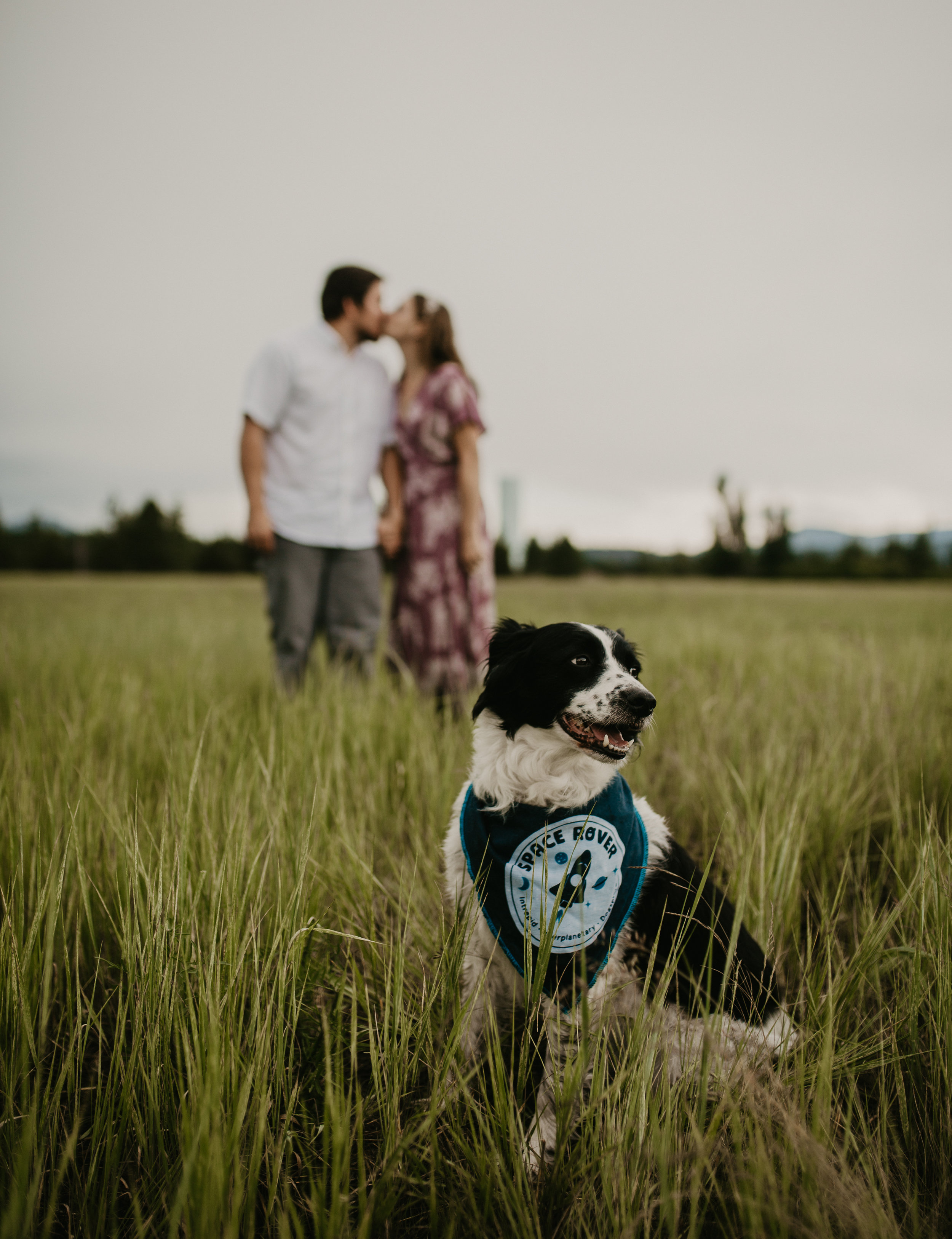 Engagement session with a cute dog