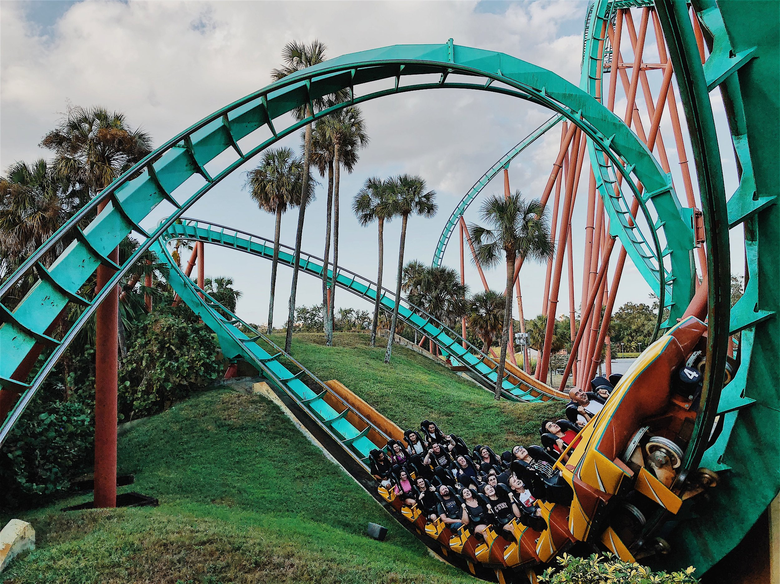 rollercoaster entrepreneurial journey
