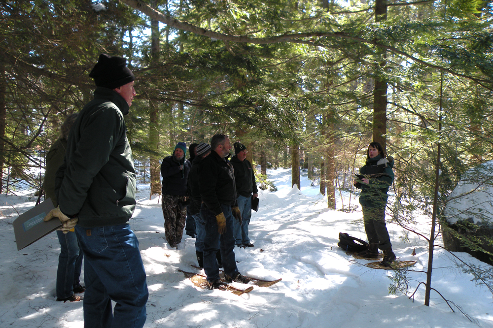 Leading a workshop exercise for a logger's workshop on Understanding Forest Biodiversity.