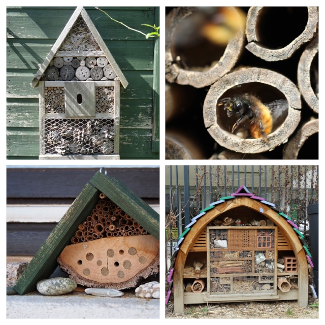 "Artificial nesting structures, or ""bee hotels"" can be highly variable, artistic, and fun."