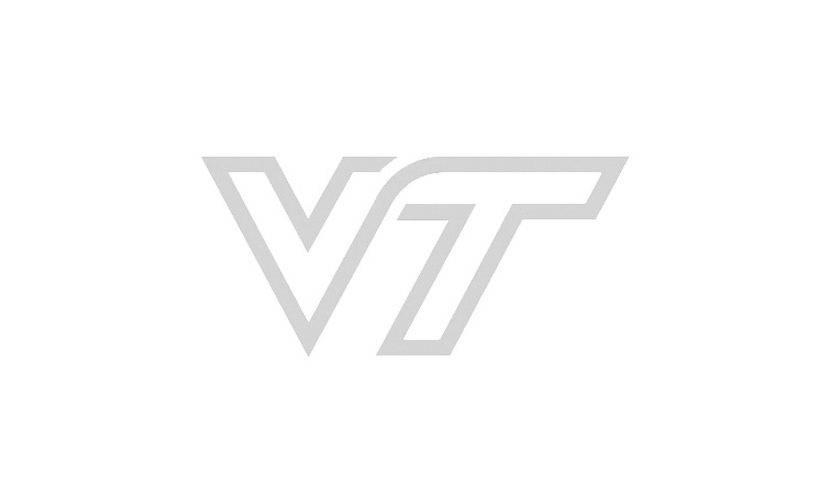 VT_Logosmal.jpg