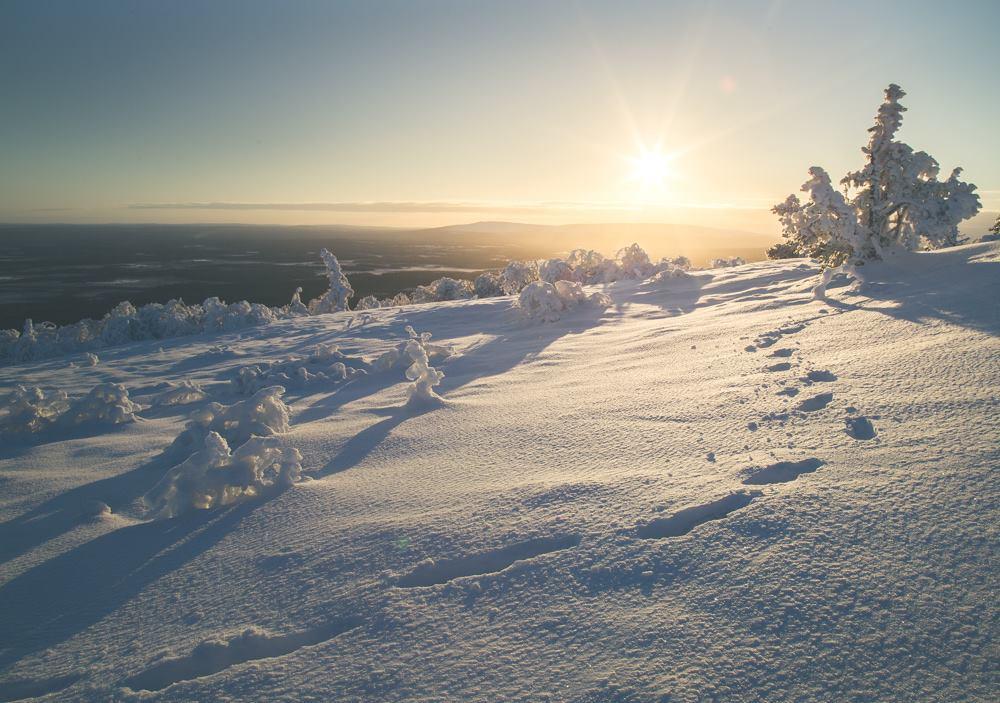 Photo Source : Levi Lapland  Facebook