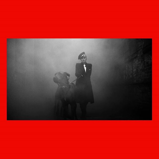 Talk about an entrance. 💣💥 A still from  HER-STORY with @madonna and the amazing @luigiandiango . It was a pleasure to produce such a special piece with this team. . . Shout out to the co-stars of this scene George & Alfred 🐕🐕 and their papa @topunknown  #madonna #vogue #voguegermany #internationalwomensday