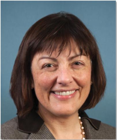 Suzan DelBene (D) - 1st Congressional District