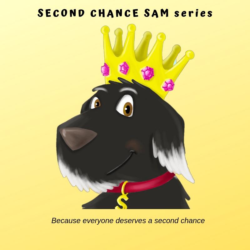 Second Chance Sam Series (1).jpg