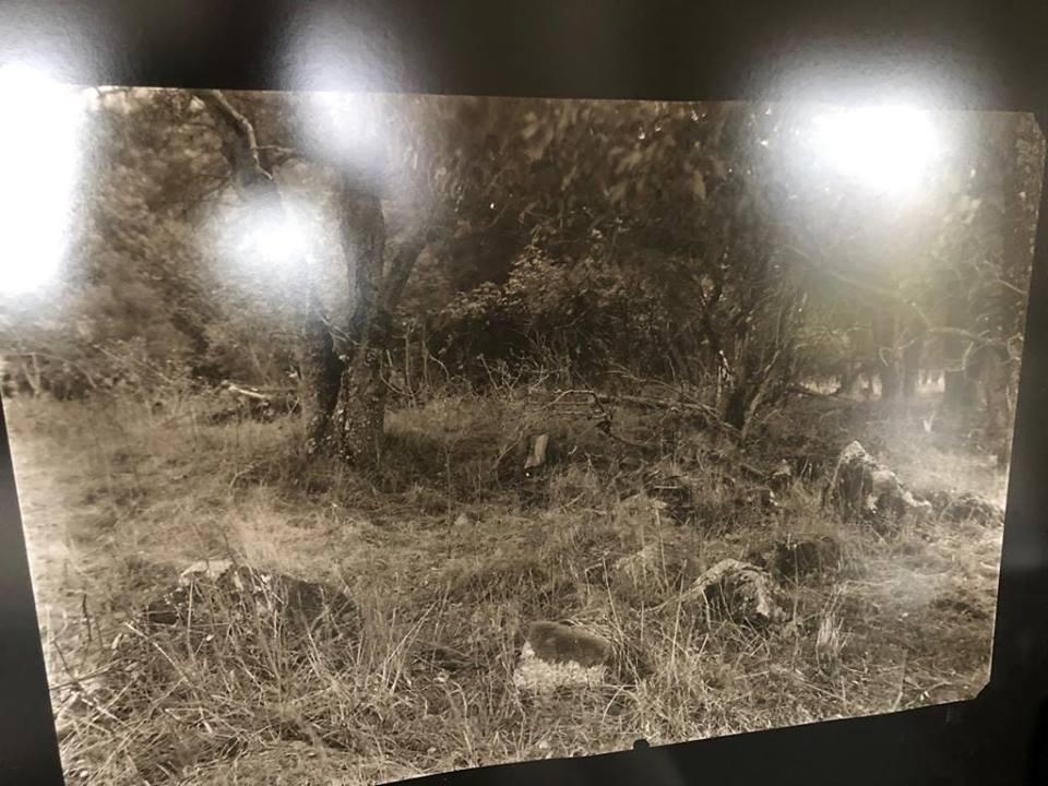 20. Pavel Berkovič a David Cysař, Schillerberg, fotografie z negativu 108x70cm z cyklu Labyrintem.cz, vyvolávací cena 3900,- Kč