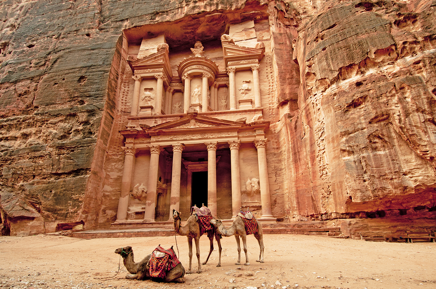 4.   Camels & Petra.jpg