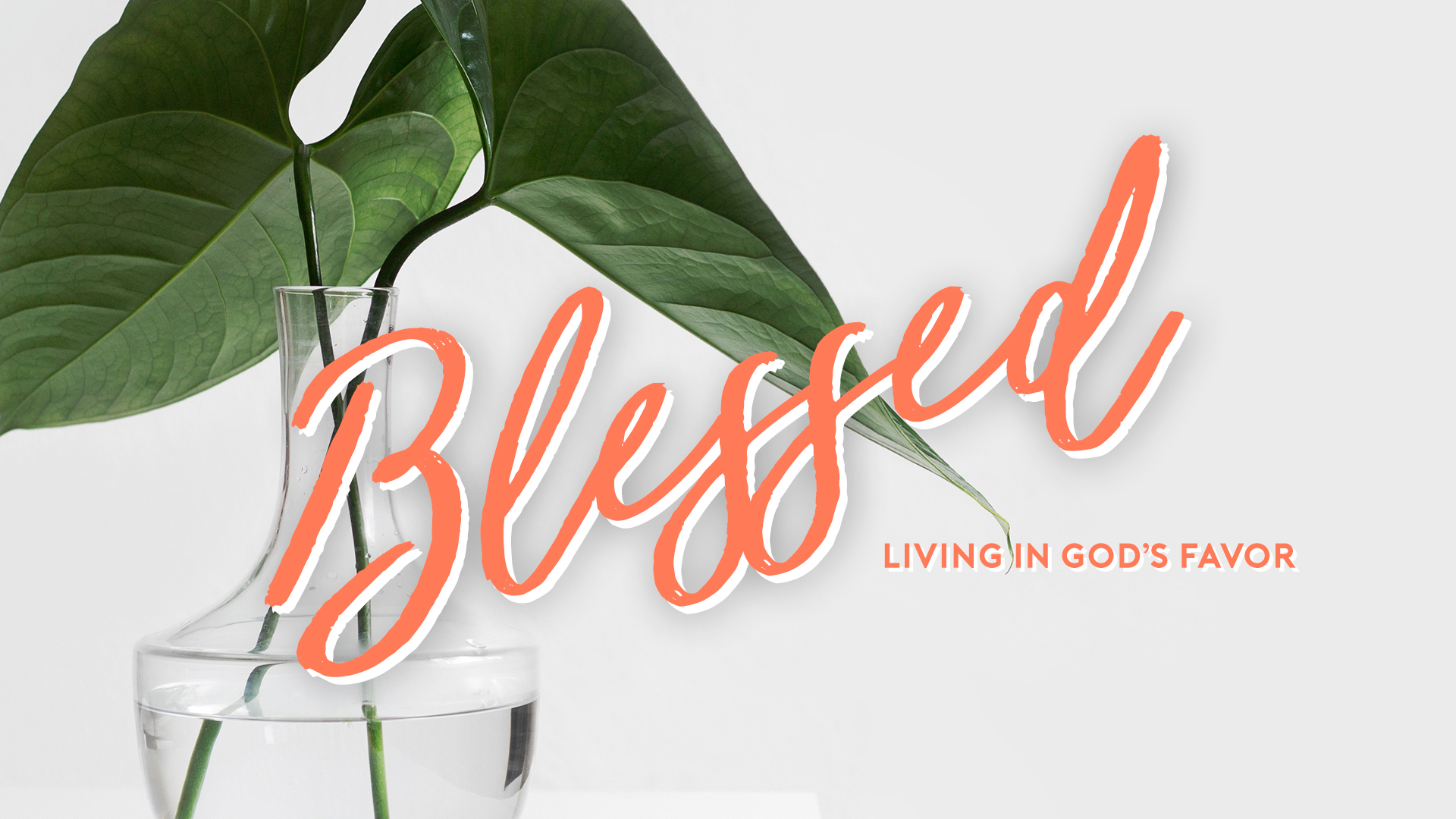 Blessed_Onscreen_1920x1080.jpg