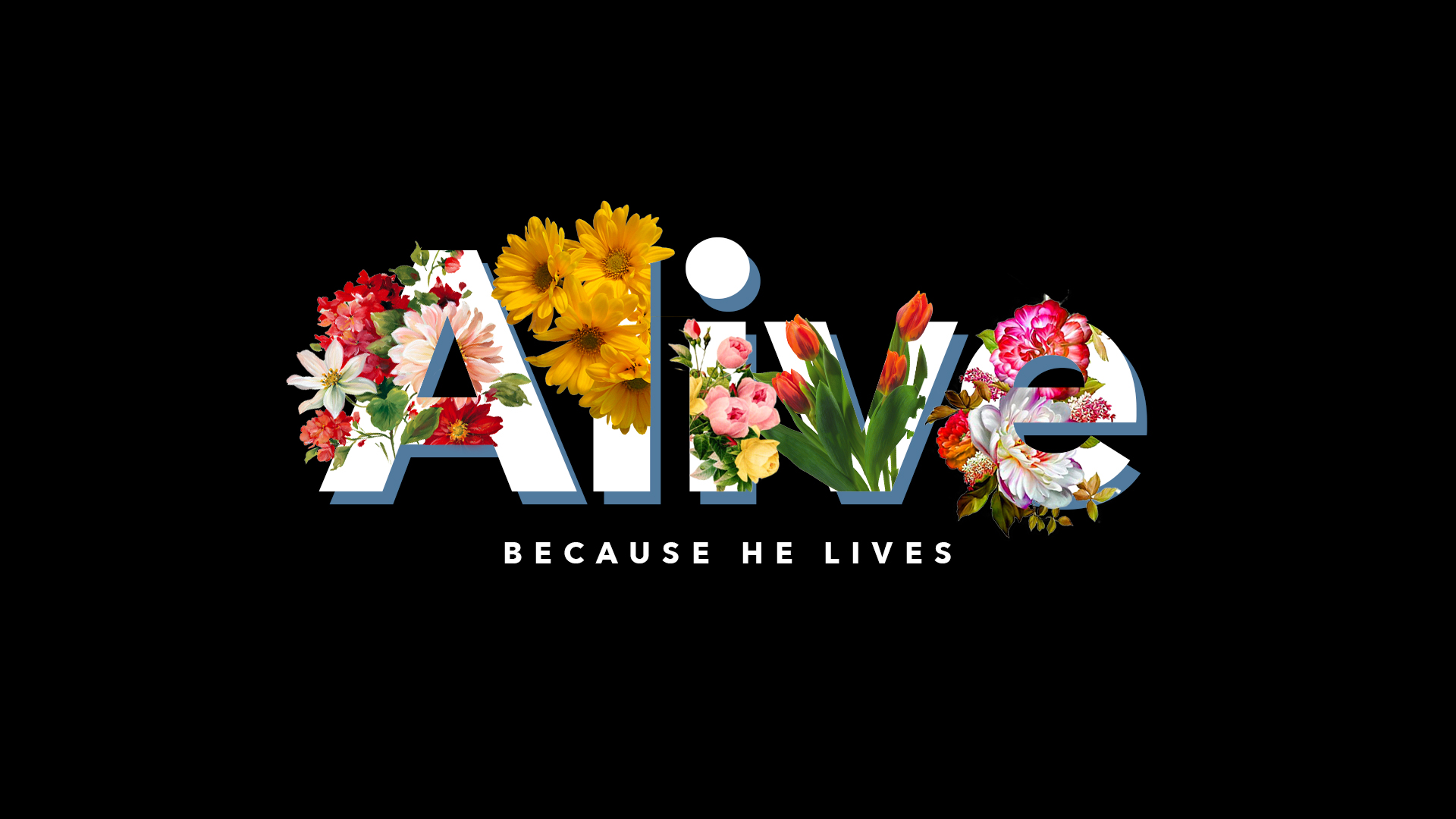 Alive_BLACK-FOR PRINT.jpg