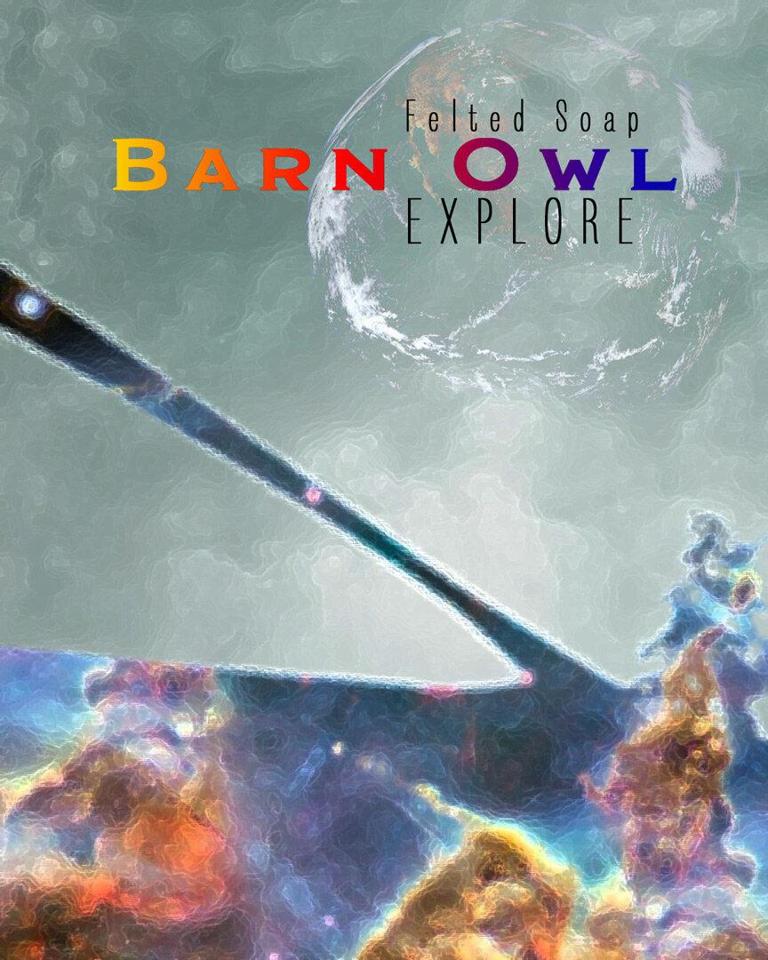 BarnOwlExplore.jpg