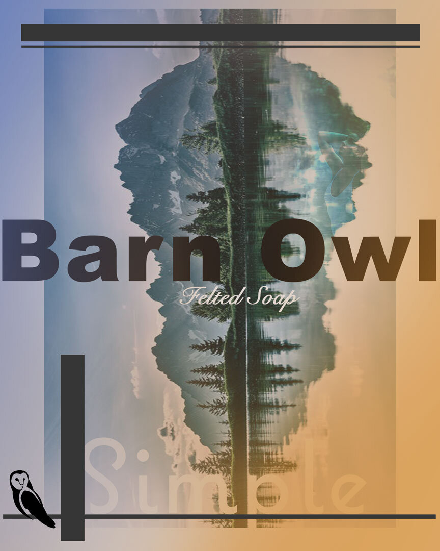 Barn-Owl-Marketing-Image-Simple_logo.jpg