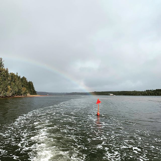Rainbows in PEI lead to oysters