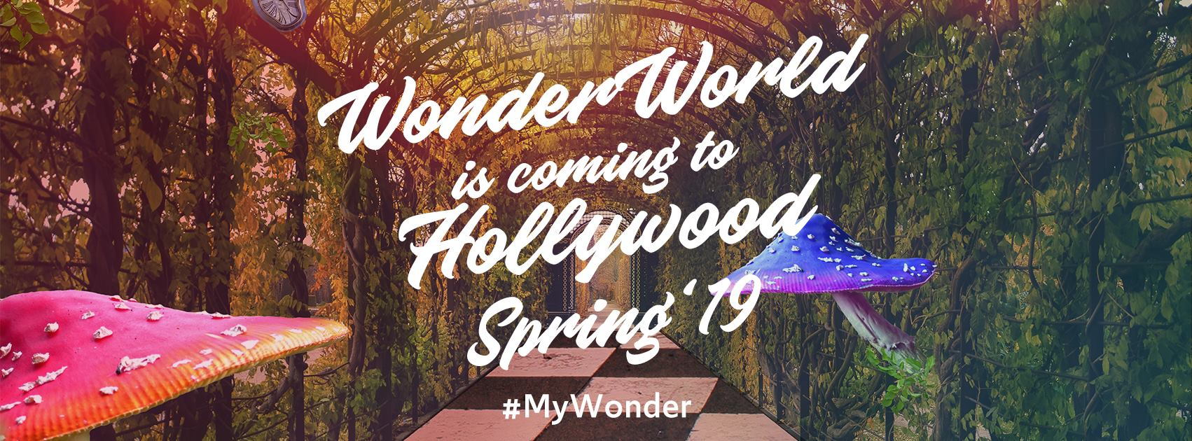 Wonder World LA is located at 7080 Hollywood Blvd.