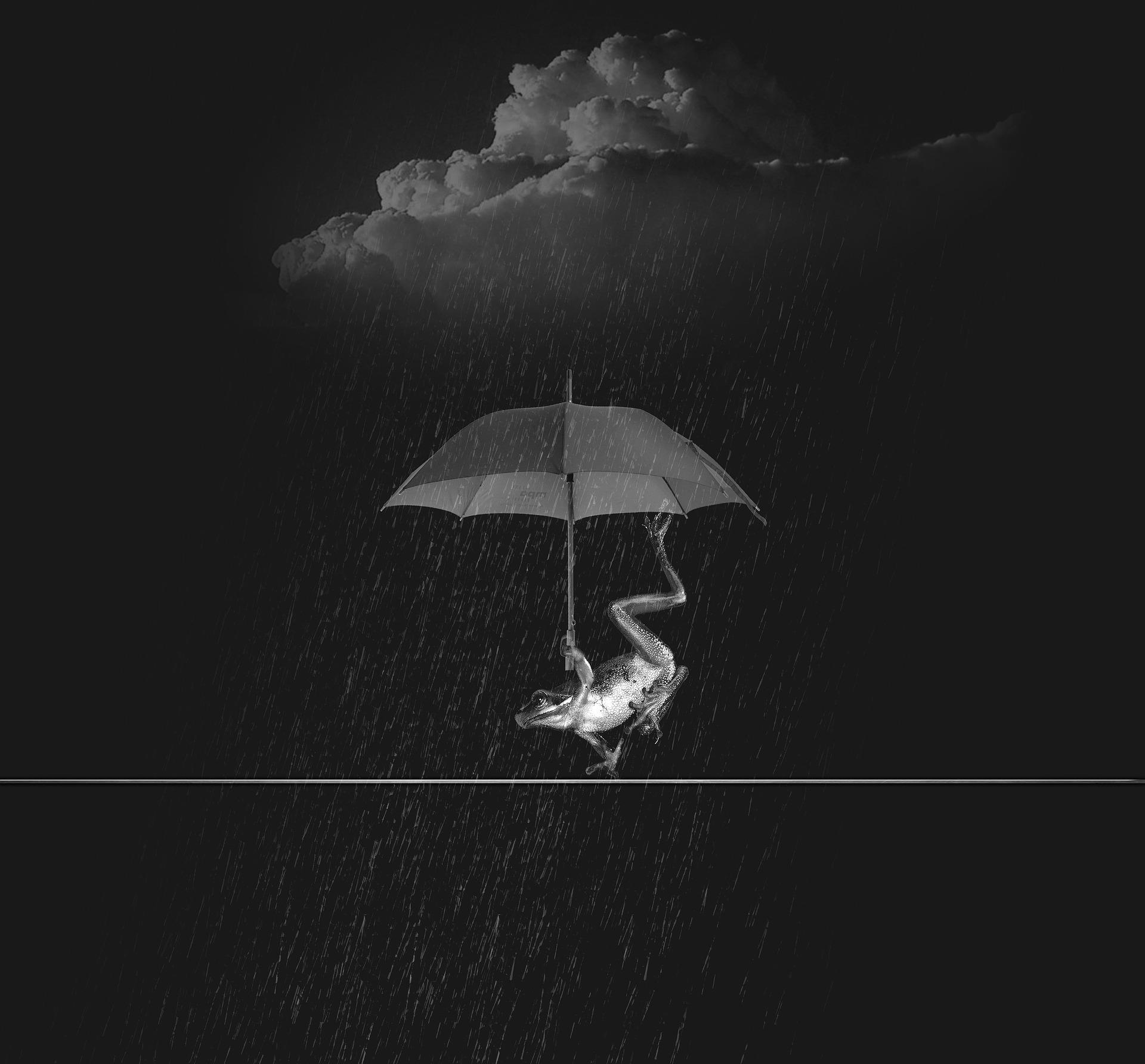 weatherman-849792_1920.jpg