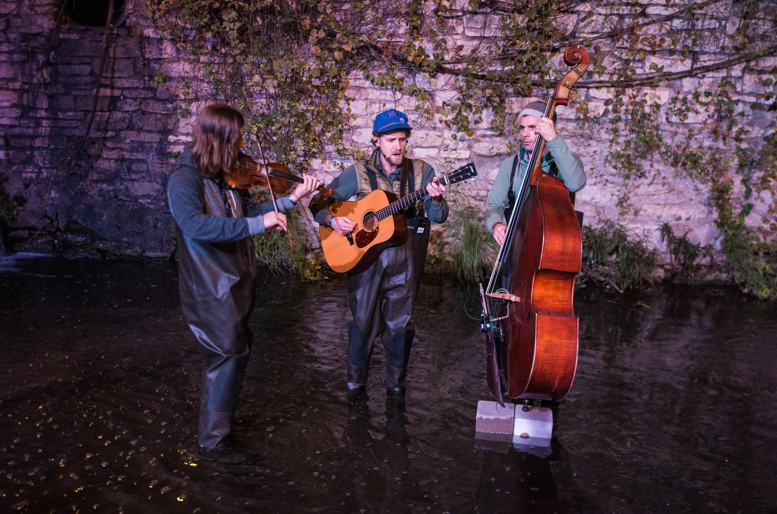 bluegrass in the creek