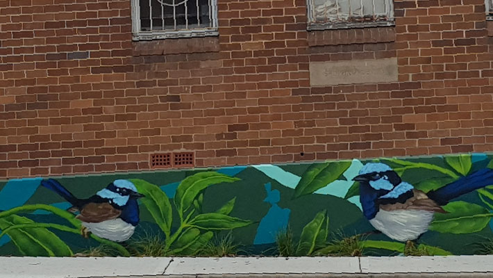 local-kids-help-inspire-bird-life-mural-on-callaghan-street.jpg