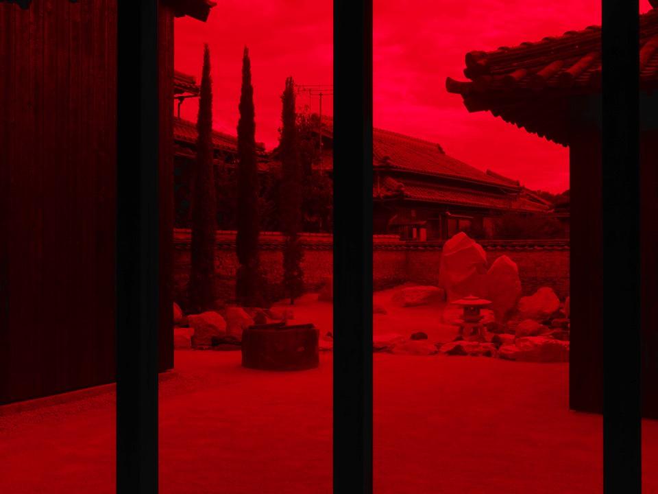 yokoo house red