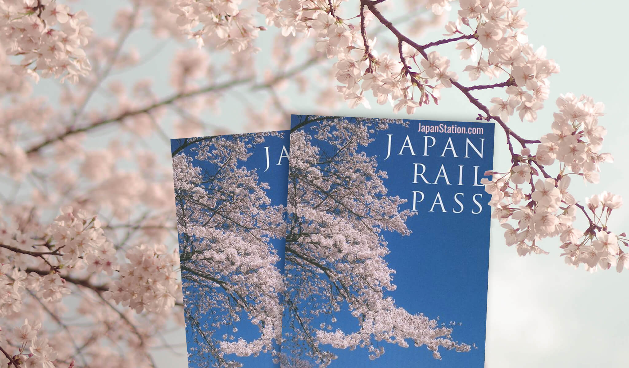 Image result for japan rail pass