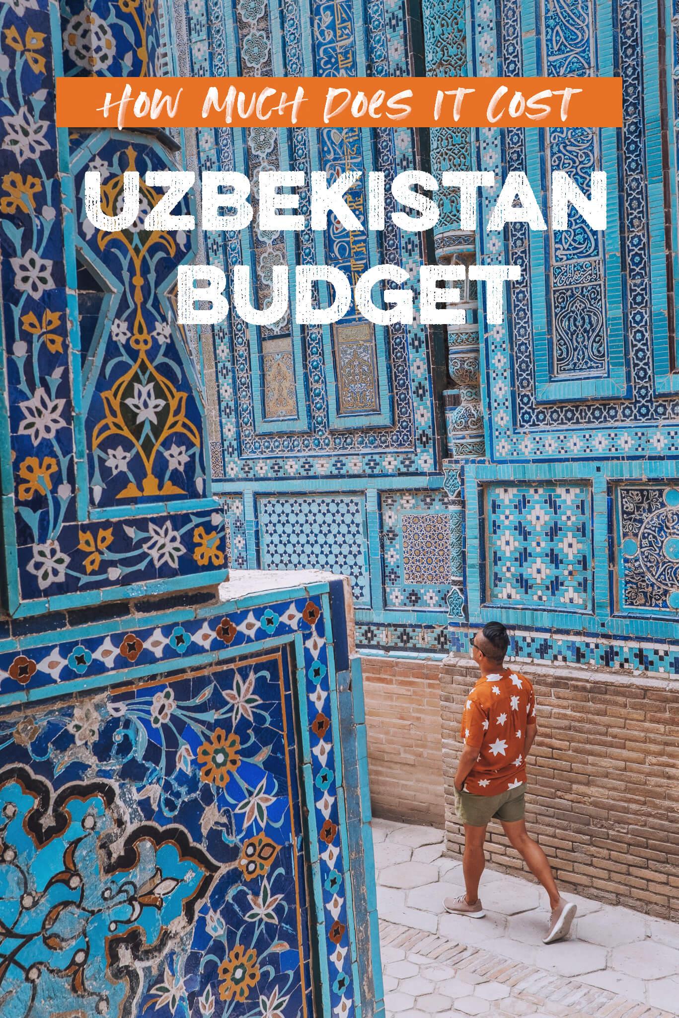 Uzbekistan-Budget-Pin.jpg