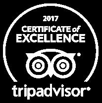 trip-advisor-logo-2.png