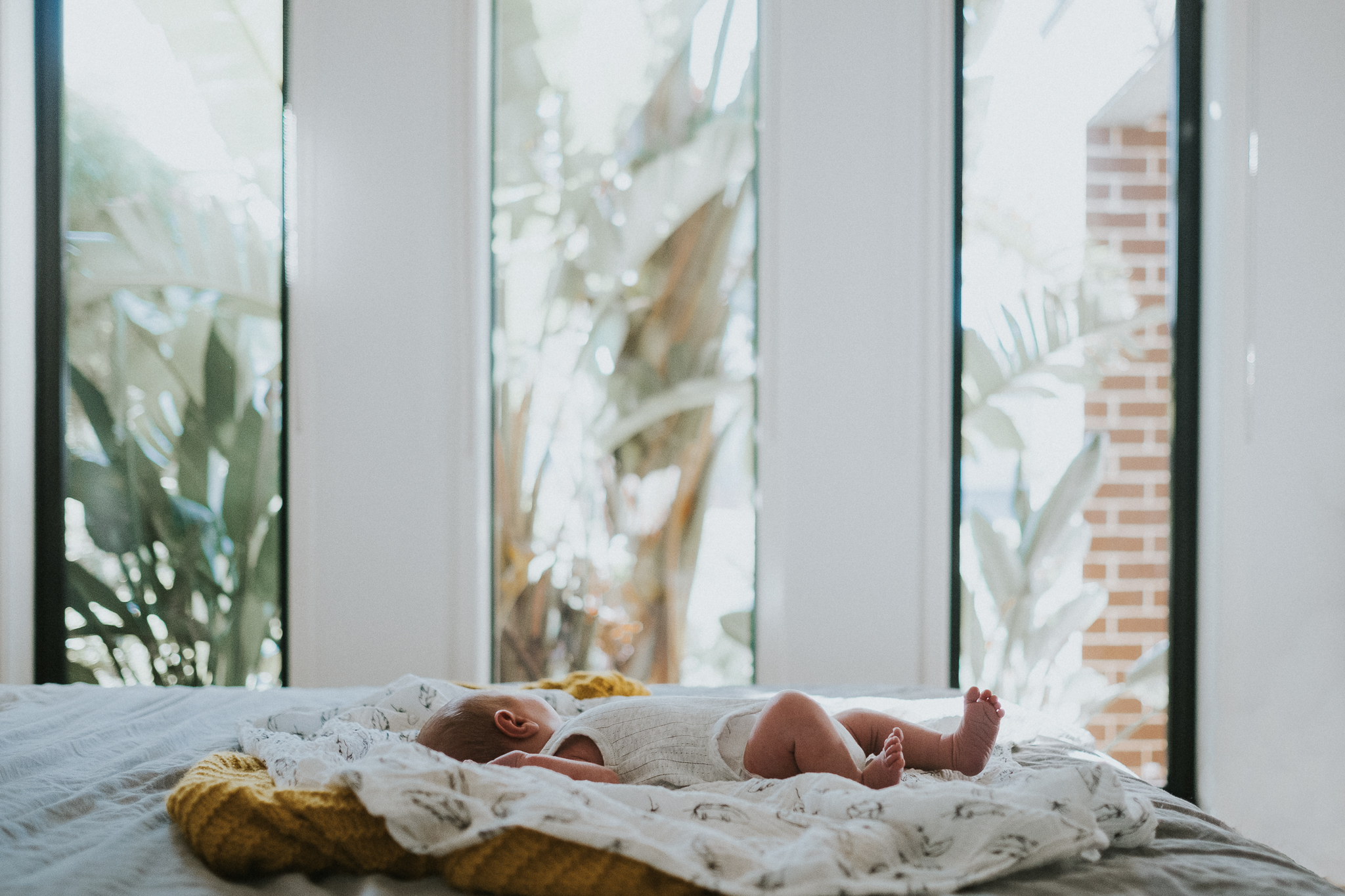 Mornington Peninsula Newborn Photography