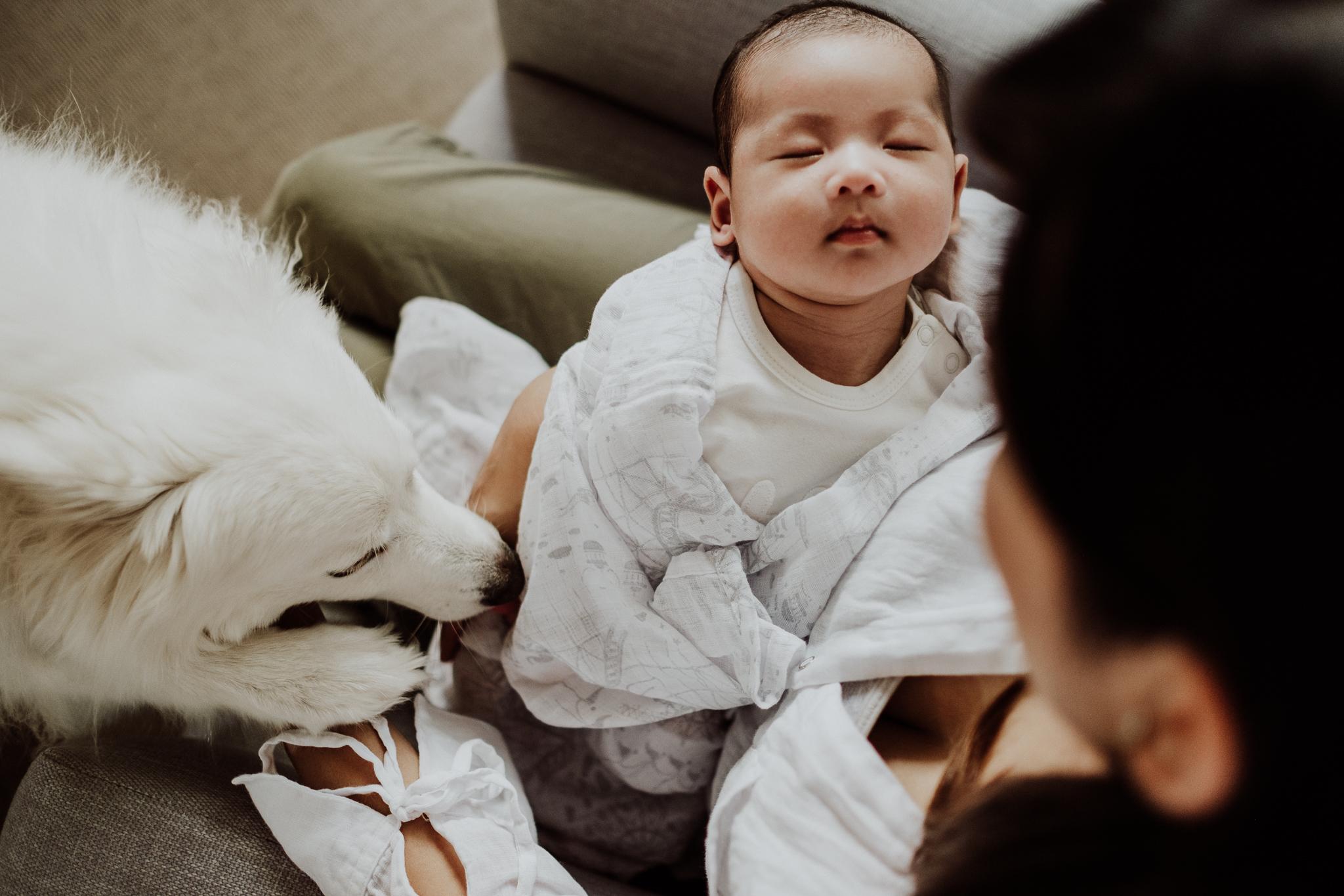 Melbourne Newborn Photography (11 of 21).jpg