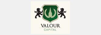 Valour Capital