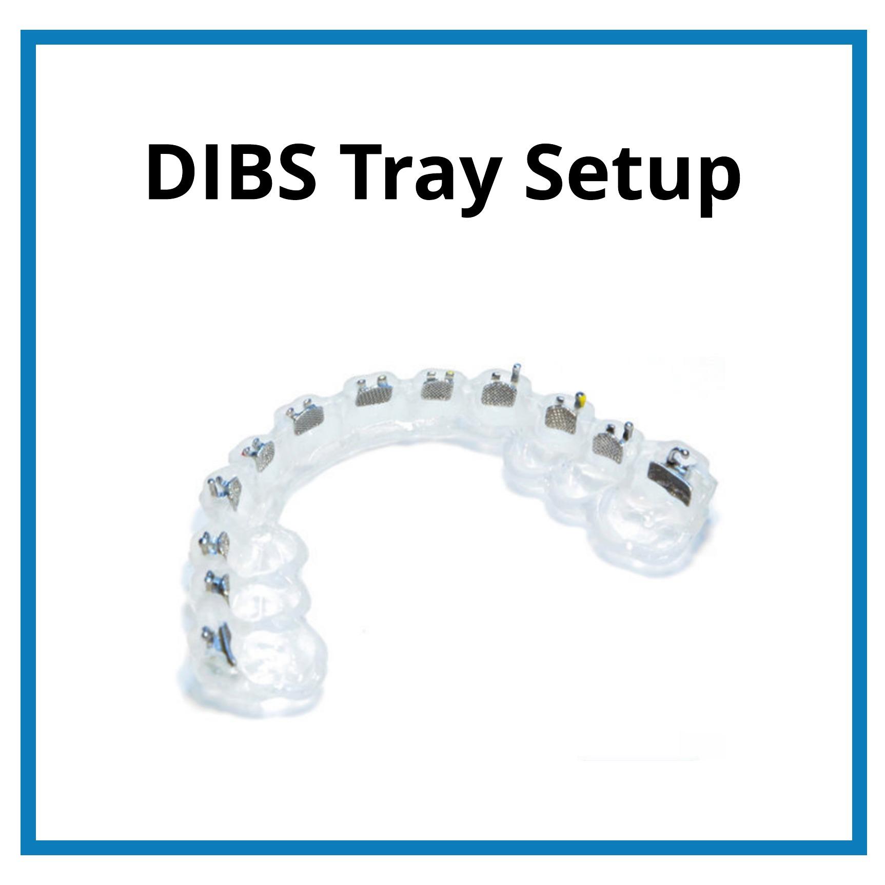 DIBS Tray Setup.jpeg