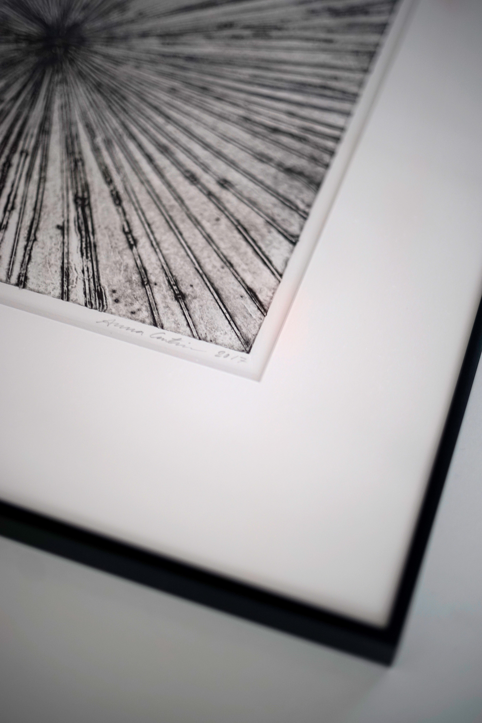 Print framed with white passepartout