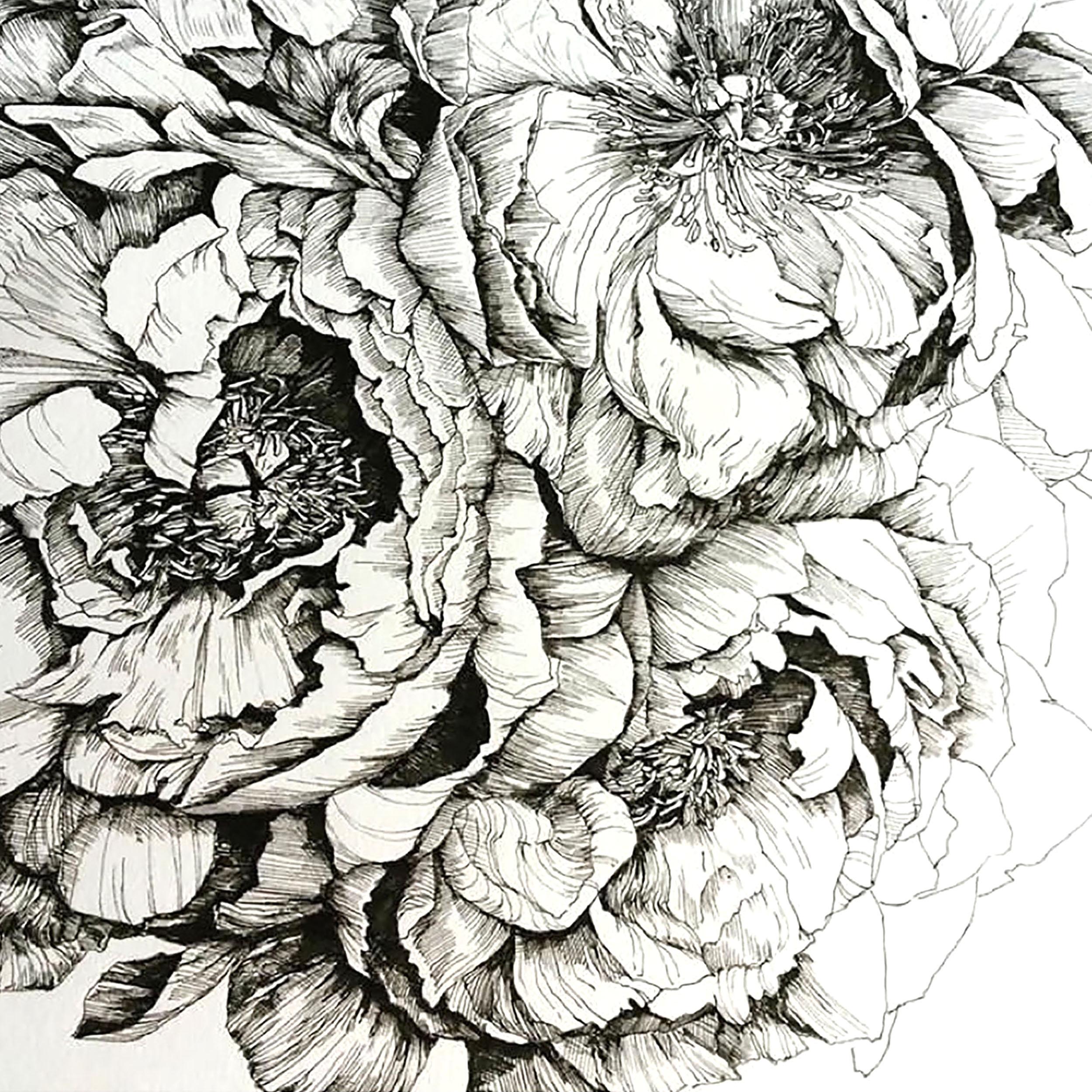 Art by Lizzie Coles