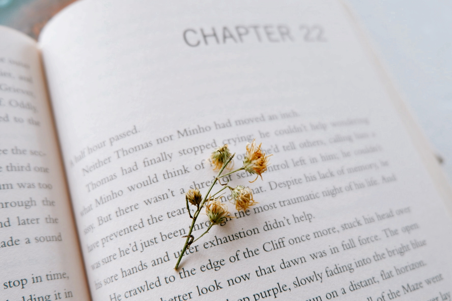 Books That I Can't Stop Recommending - By Ruthie