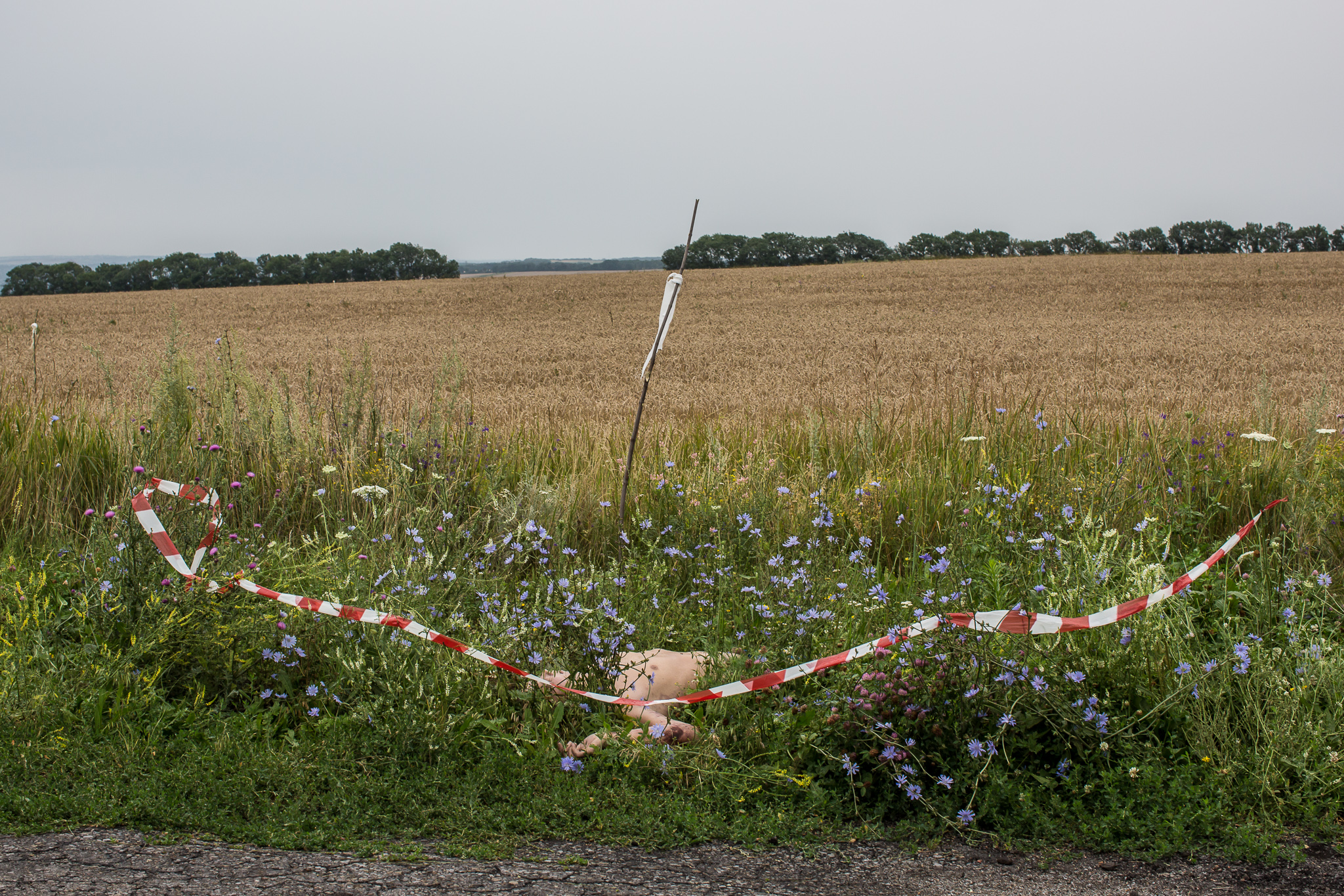 The body of a passenger on Malaysia Airlines flight MH17 lies at the edge of a road on July 18, 2014 in Grabovo, Ukraine. The flight, traveling from Amsterdam to Kuala Lumpur, crashed on the Ukraine/Russia border near the town of Shaktersk. The Boeing 777 was carrying 298 people.