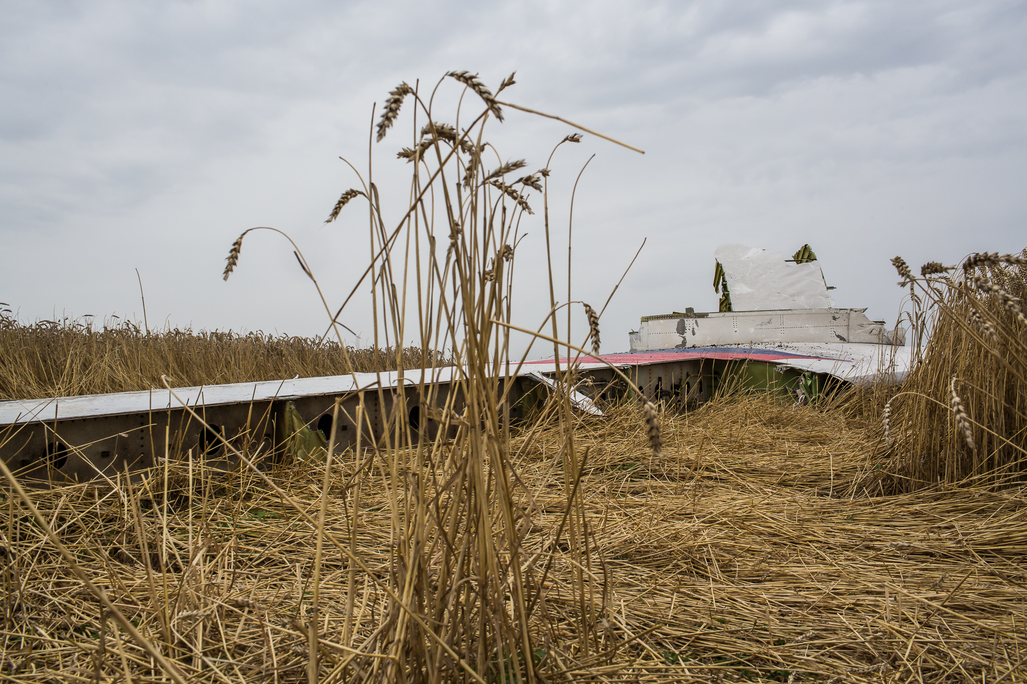 The tail from an Air Malaysia plane crash lies in a wheat field on July 18, 2014 in Grabovo, Ukraine. Malaysia Airlines flight MH17 travelling from Amsterdam to Kuala Lumpur has crashed on the Ukraine/Russia border near the town of Shaktersk. The Boeing 777 was carrying 298 people.
