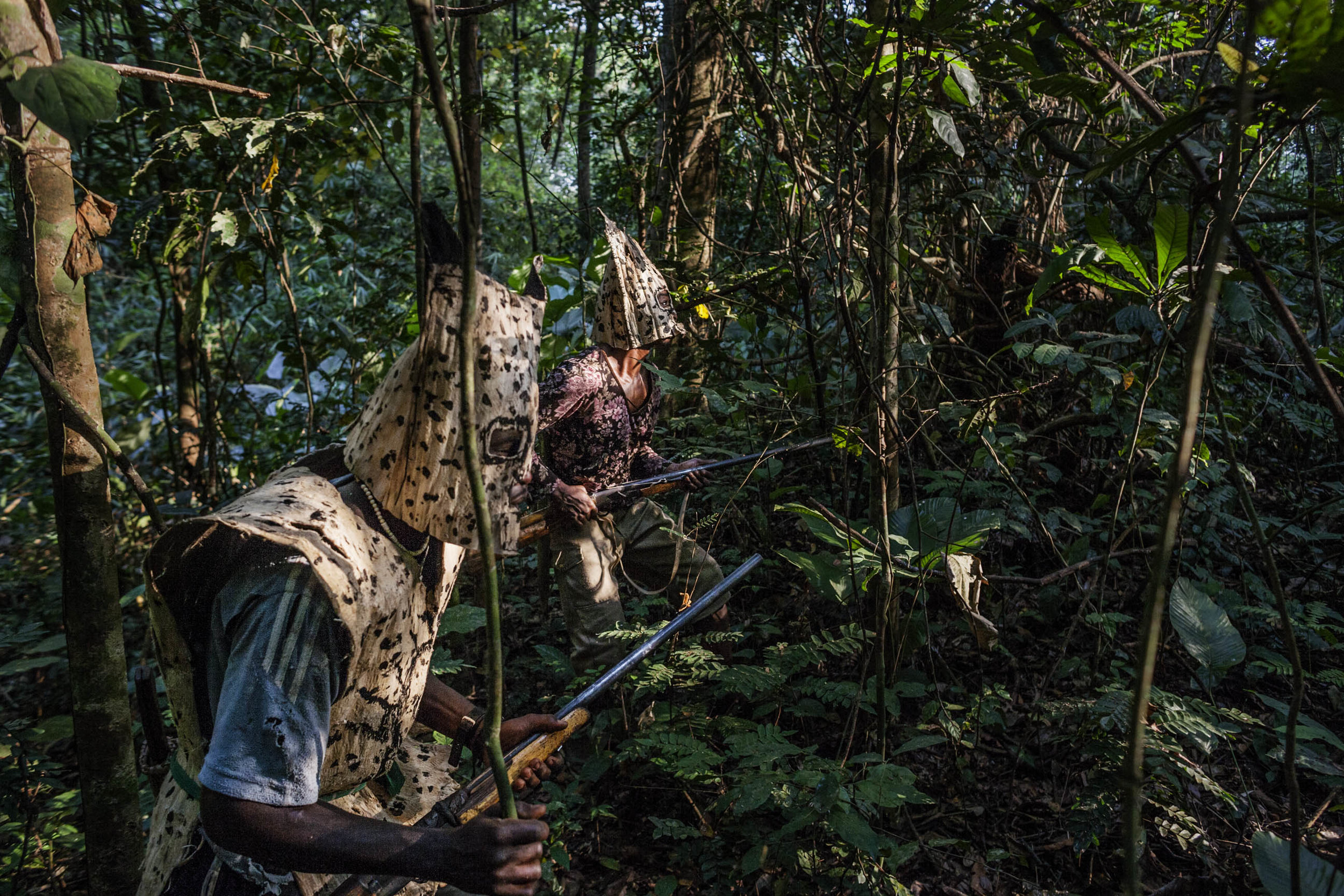 Bushmeat hunters hunt for monkeys in the forest outside of Wisi.  (Pete Muller/Prime for National Geographic)