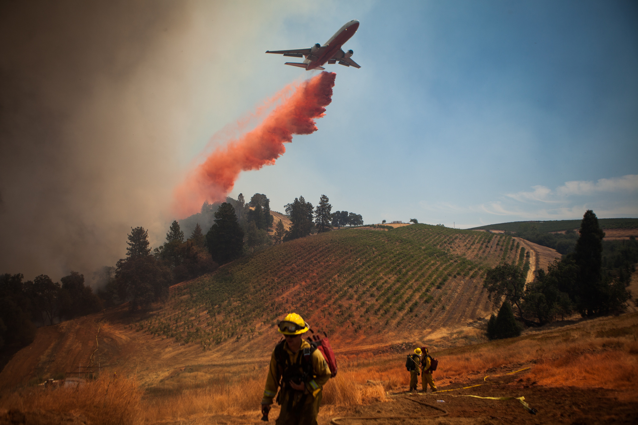 A plane drops fire retardant on a vineyard while battling the Sand Fire near Plymouth, California, July 26, 2014. The Sand Fire destroyed 20 homes and burned more than 4,200 acres near the town of Plymouth.