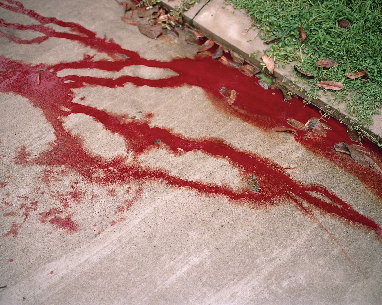 The blood of two brothers and their friend in San Pedro Sula.