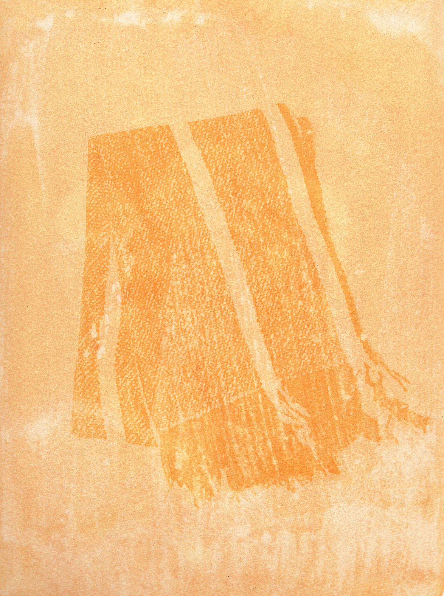 "Detail of a scarf made by the ""Hilanderas del Fin del Mundo"", a group of women dedicated to retake traditions of embroidery and weaving by invoking local production against the advance of imports using natural raw materials produced in the island. Scan of an Anthotype made with natural dyes created with Turmeric. Photographer: Luján Agusti. Tierra del Fuego. April 15th, 2018"