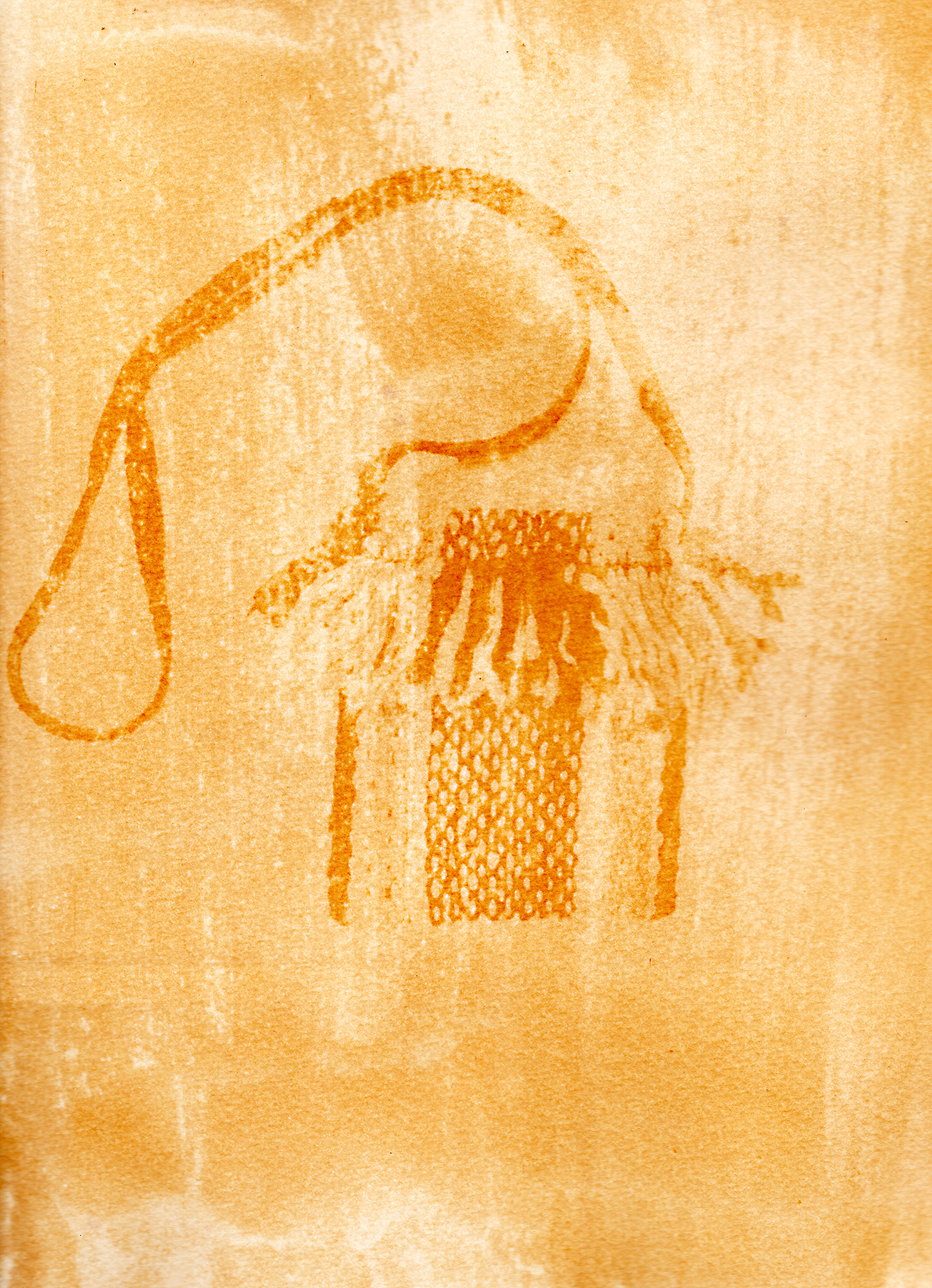 "Detail of a bag made by the ""Hilanderas del Fin del Mundo"", a group of women dedicated to retake traditions of embroidery and weaving by invoking local production against the advance of imports using natural raw materials produced in the island. Scan of an Anthotype made with natural dyes created with Turmeric. Photographer: Luján Agusti. Tierra del Fuego. April 15th, 2018"