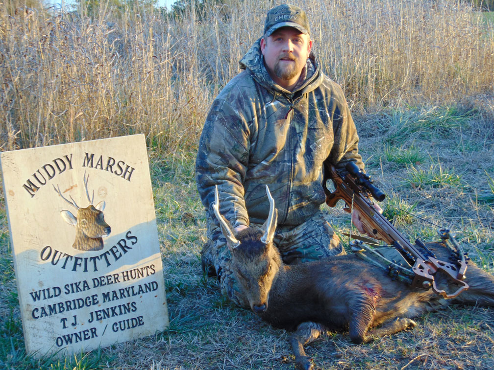Despite guide's death, no hunter education required for md. 's.