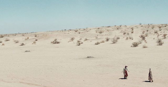 ☀️ desert beauties  @lady.dianalynne @biancarusu #pioneersfilm
