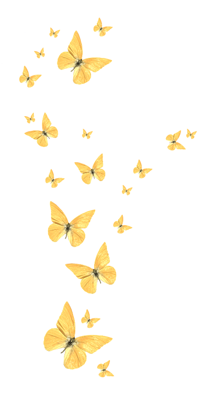 kisspng-butterfly-golden-butterfly-5a7d5ca40f6ce9.8633525615181651560632.png