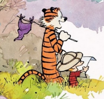 Image from the cover of  Exploring Calvin and Hobbes – An Exhibition Catalogue , by Bill Watterson