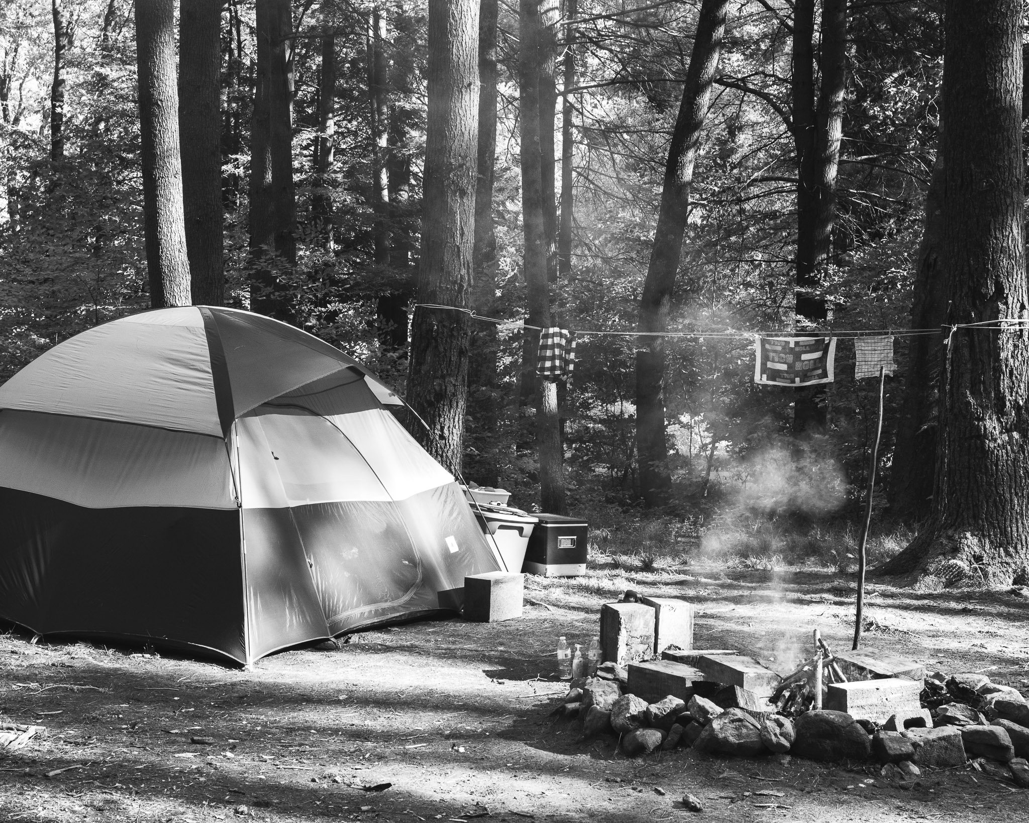 the campsite melanie and i had stayed at in allegheny national forest in may of 2017