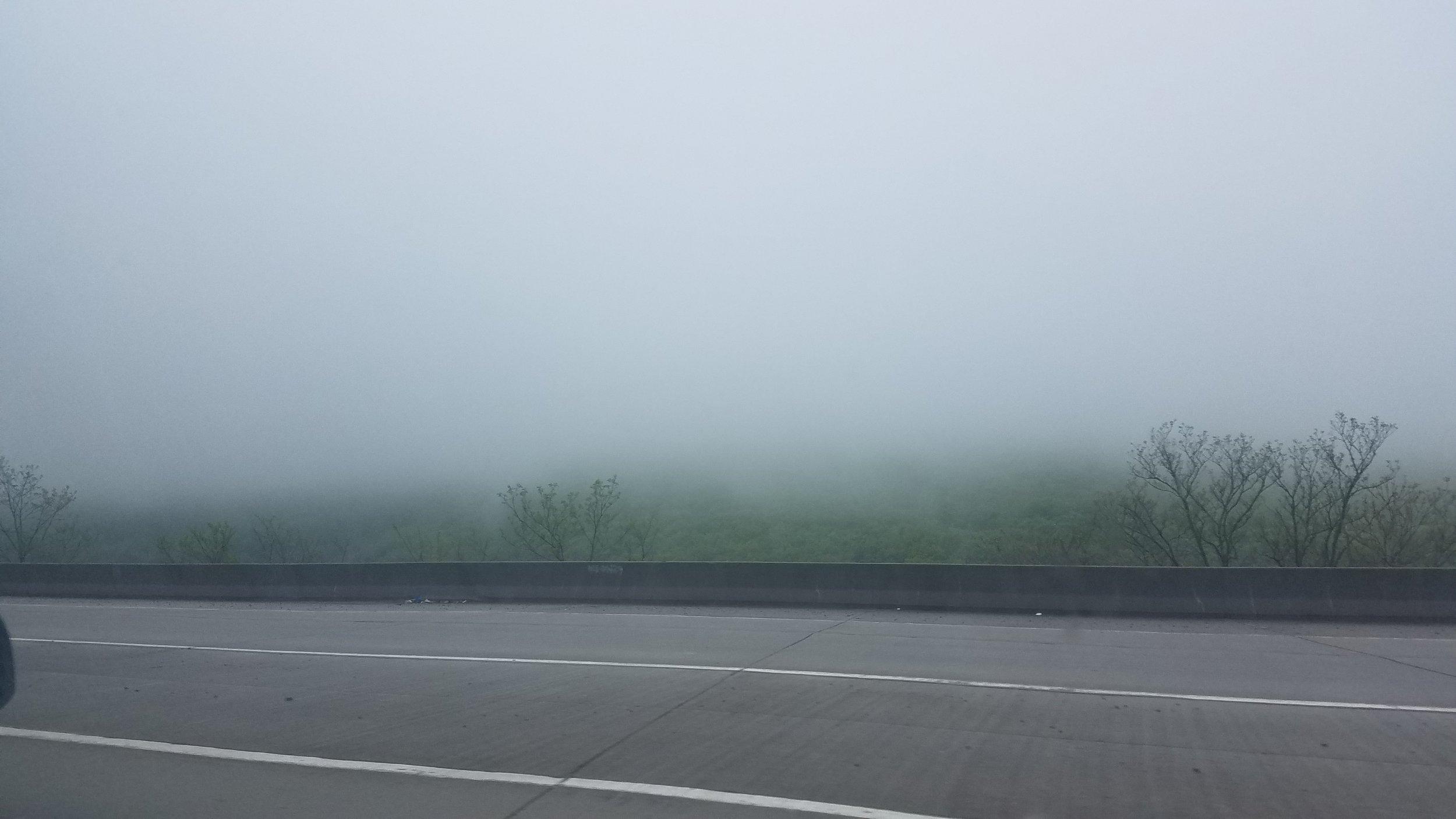i just cannot help myself - i love the fog