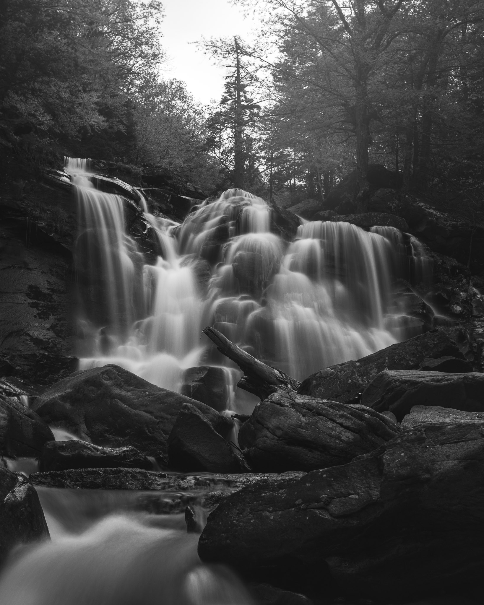 A black and white photograph of Bastion Falls in New York, created by fine artist Cody Schultz of Pennsylvania. This photograph has very strong foreground elements that help to guide the viewer's eyes towards the main subject, the waterfall. The rocks and lone tree branch in the foreground are pin-sharp and filled with a multitude of micro-contrasts that help to pop them off the screen/paper. Bastion Falls itself points the viewer up to a tree, standing tall, that looks down upon the viewer as if it is challenging them.