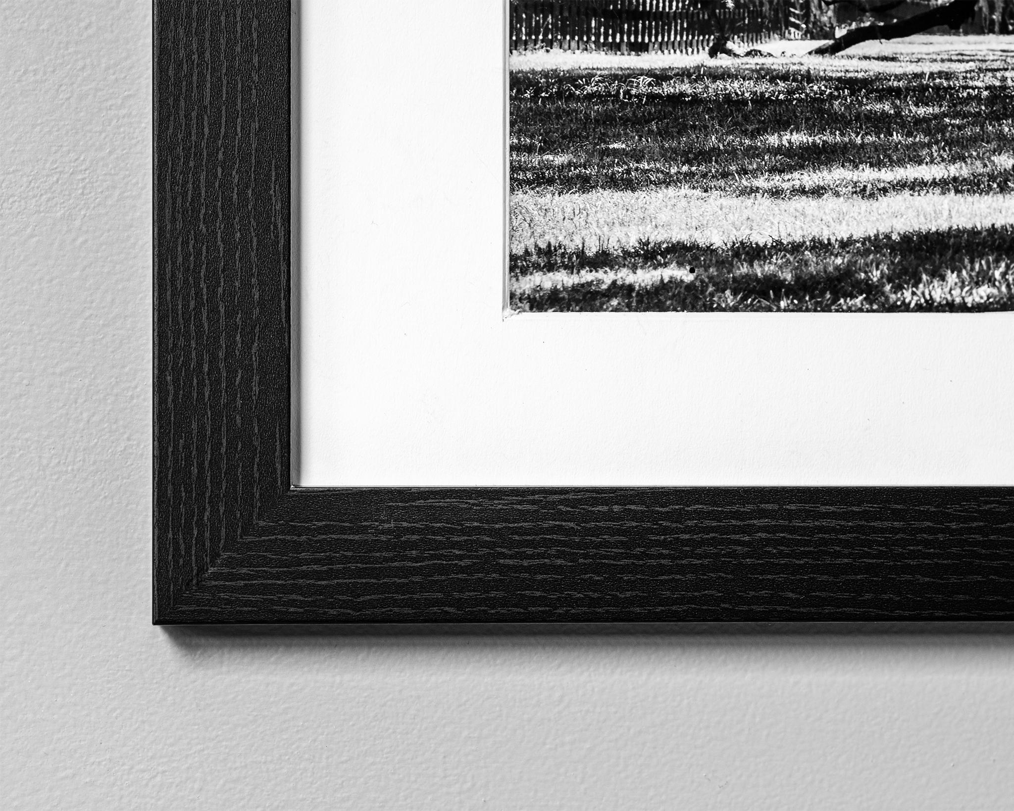 Black Maple Frame - Cody Schultz - Fine Art Nature Photography.jpg