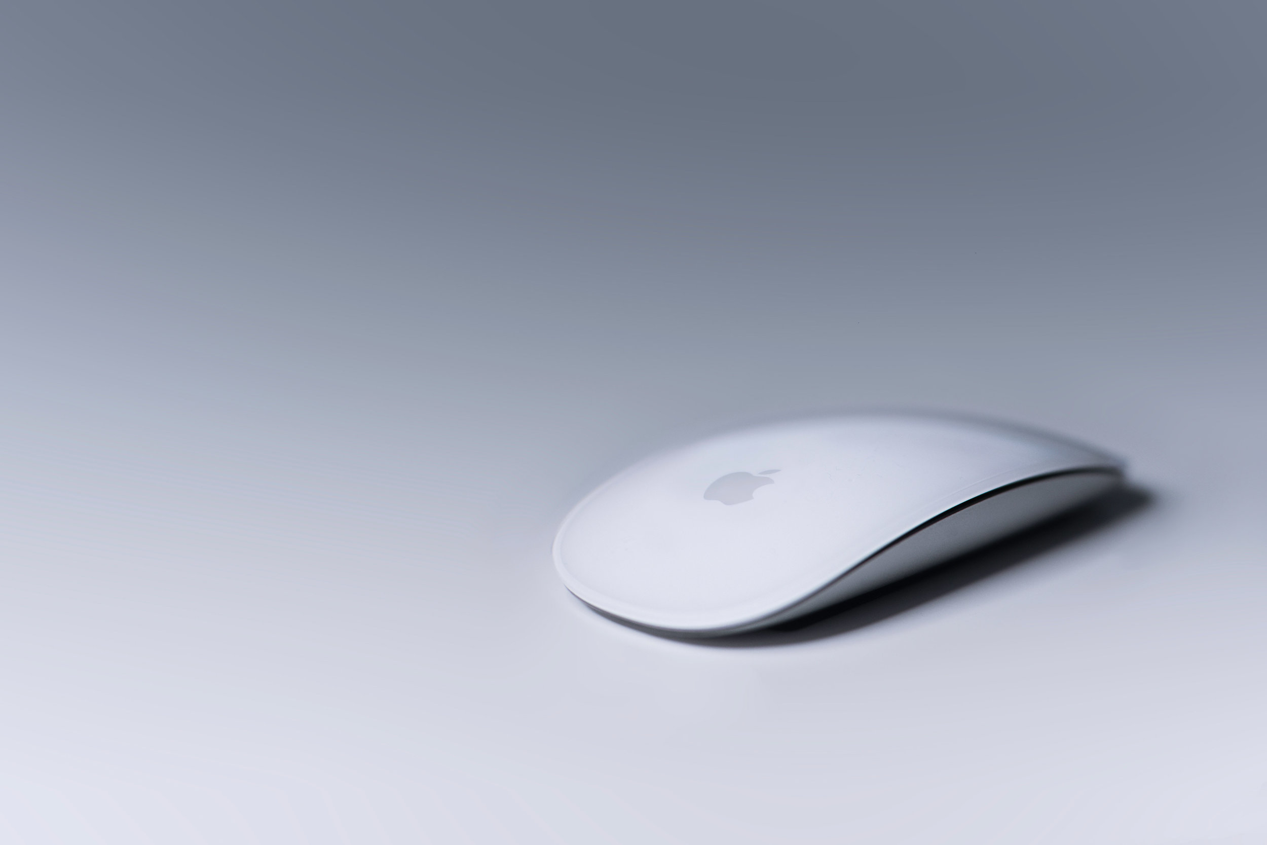Archisoup-best-computer-mouse-architecture-student-and-architects.jpg