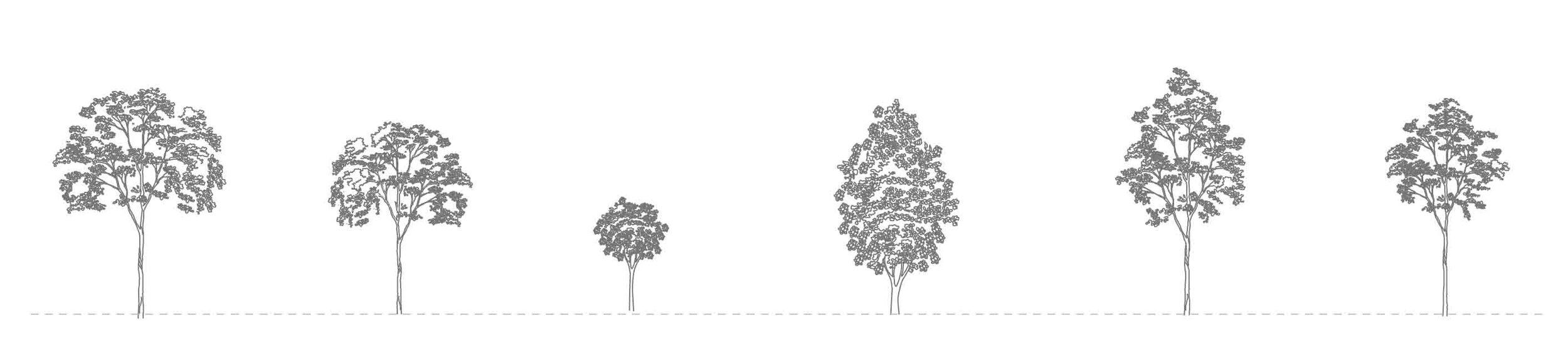 Free_CAD_Tree_Blocks.jpg