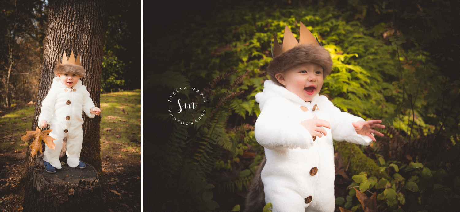 Where the wild things are birthday party - Cal's 1st Birthday - Canby Oregon
