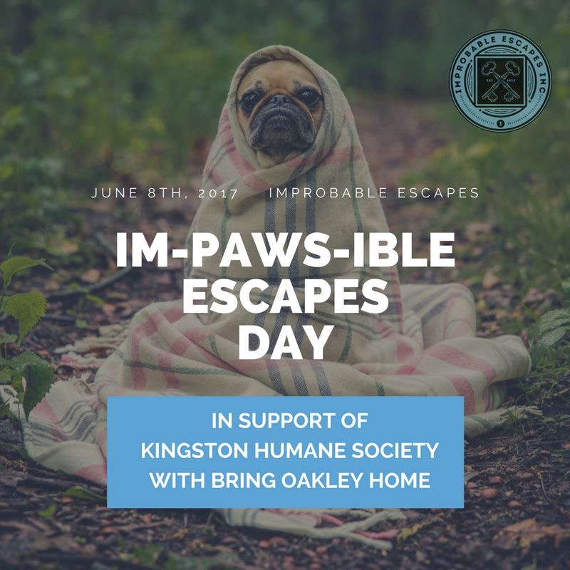 Im-PAWS-ible Escapes Day was one of the events I had the pleasure of planning while on placement with Improbable Escapes. A fundraiser for the Kingston Humane Society in partnership with Bring Oakley Home. The event is happening on June 8th.